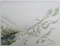 Cardingmill valley fog