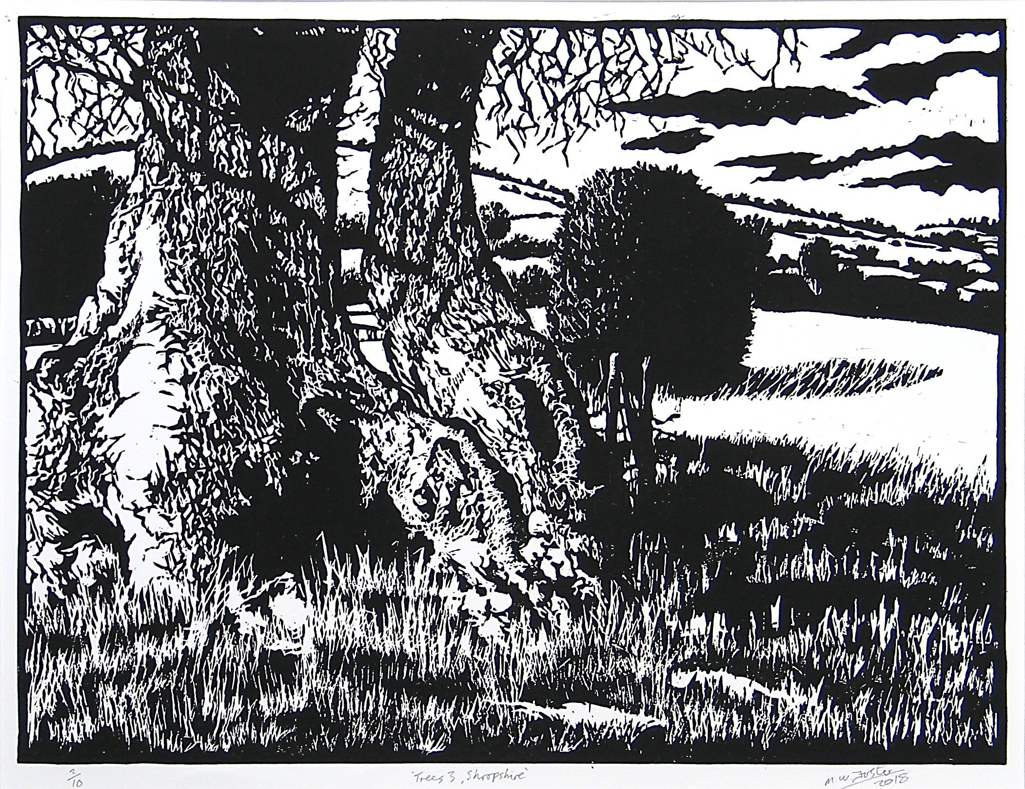 Trees 3, Shropshire