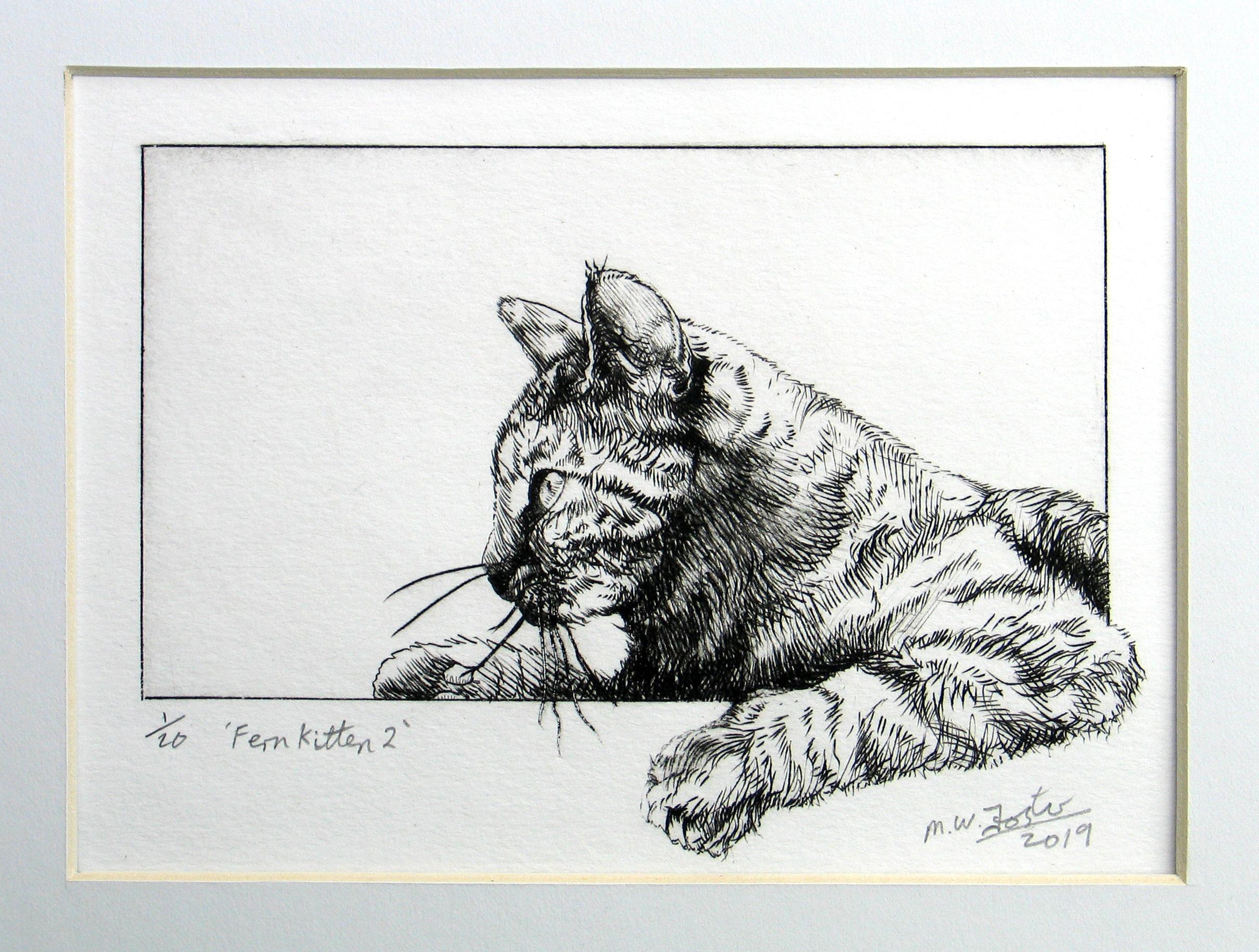Fern Kitten 2