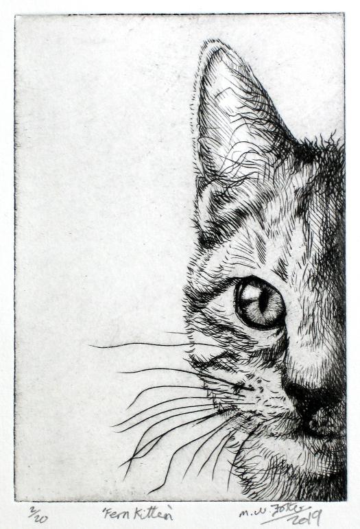 Fern Kitten